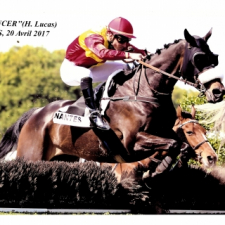 SET DANCER retrouve le.....
