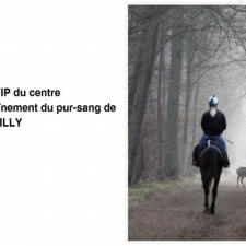 Visite à la carte de Chantilly